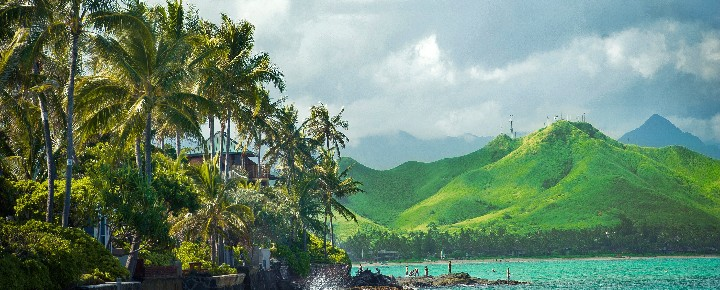 Jonesing For Hawaii