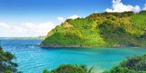 Many New Hawaii Testing Options + Easier Vaccine Verification