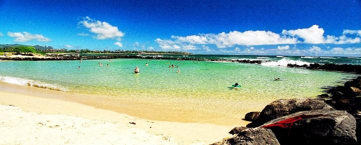 Shark Closes Lydgate Beach Kauai   Sharks in Hawaii