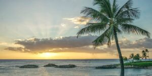 Utopia Found | Hawaii By Old Dominion
