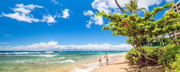 Hawaii Travel: Feast or Famine. Take Your Pick.